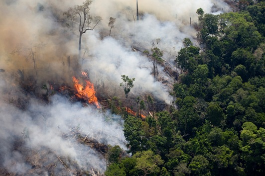 Queimada na Amazônia