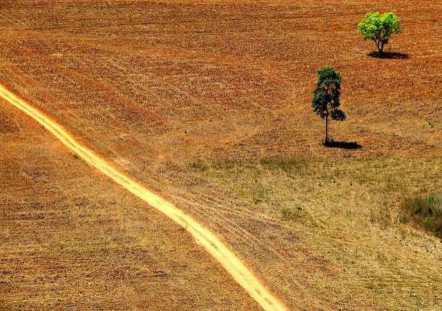 How the Political Crisis is Threatening Brazil's SustainableGoals